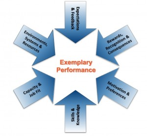 The Exemplary Performance System